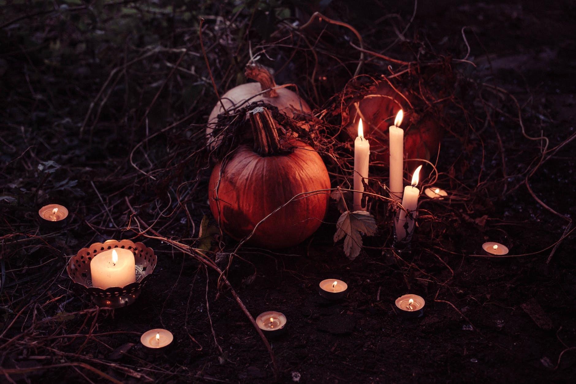 halloween zucche-2