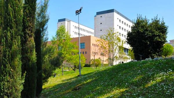 """Al campus universitario c'è """"Pink Walk"""", la camminata per la prevenzione del tumore al seno"""