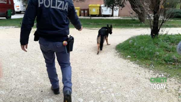 Blitz antidroga a scuola e al campus universitario: sequestrati hashish e marijuana