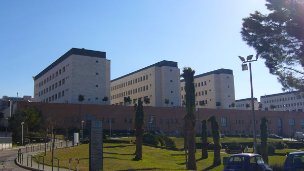 "Droga al campus dell'università : arrestato ""studente spacciatore"""
